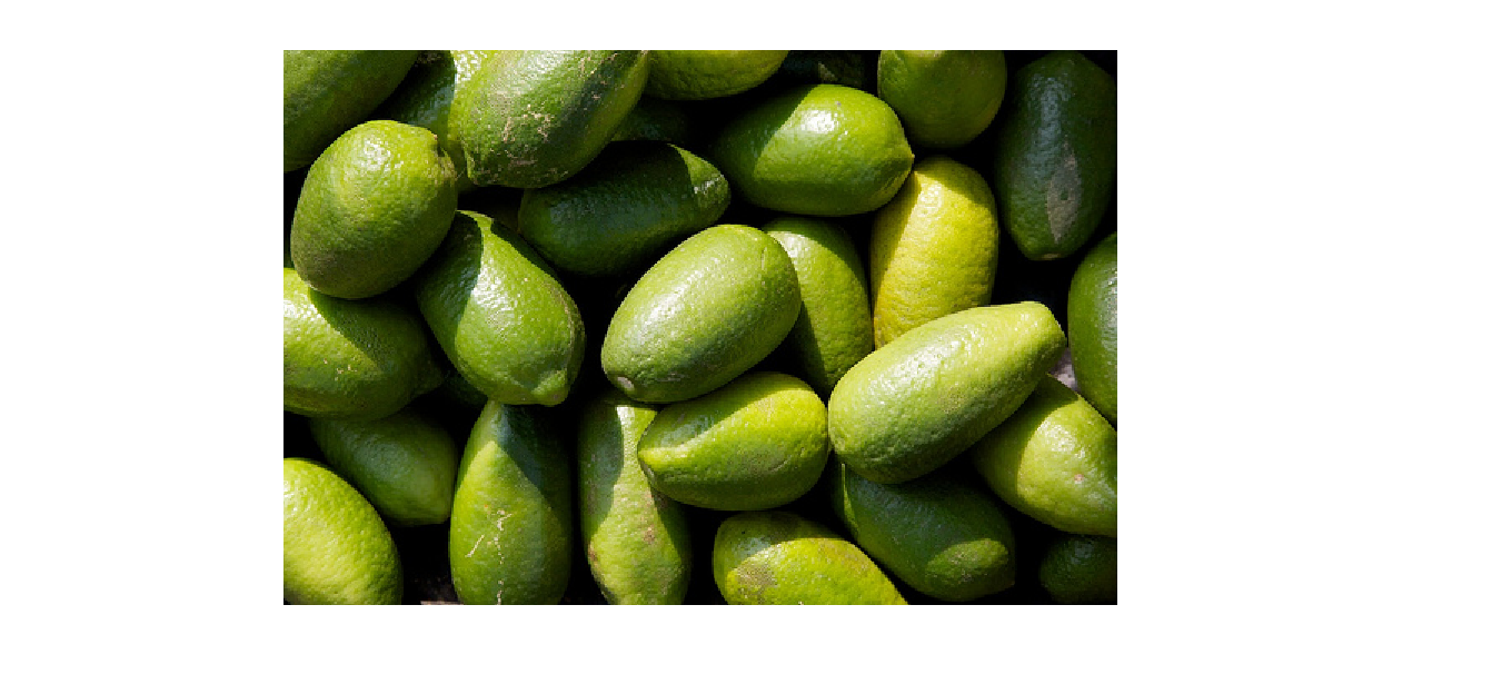 Green Lemons of Assam, aide to beautiful complexion